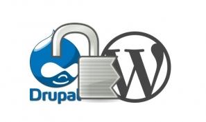 Drupal_WP Vulnerability